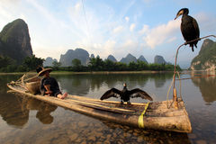 Chinese man fishing with cormorants Royalty Free Stock Photo