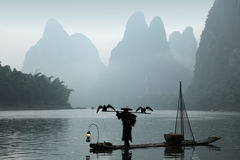 Chinese man fishing with cormorants birds Royalty Free Stock Image