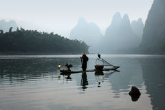 Chinese man fishing with cormorants birds in Stock Photography