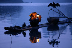 Chinese man fishing with cormorants birds in Royalty Free Stock Images