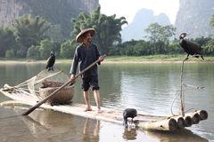 Chinese man fishing with cormorants birds in Royalty Free Stock Photos