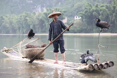 Chinese man fishing with cormorants birds in Stock Images