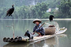 Chinese man fishing with cormorants birds in Stock Photo