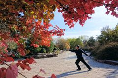 Autumnal shadowboxing Royalty Free Stock Photography