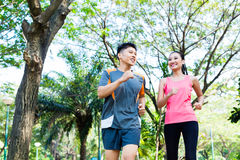Chinese man and woman jogging in city park. Asian Chinese men and women jogging in city park royalty free stock images