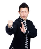 Chinese martial art posture Stock Photography