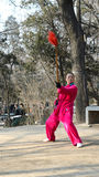 Chinese martial artist. Woman martial artist i in xigu park Tianjin China photoed on March 9th 2014 Stock Images