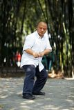Chinese martial arts Royalty Free Stock Photography