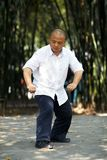 Chinese martial arts Stock Photography