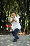 Chinese martial arts Royalty Free Stock Images