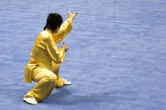 Chinese Martial Arts (Wushu) Royalty Free Stock Photography