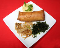 Chinese Meal. A tasty plate of Chinese food royalty free stock photos