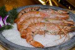 Chinese Meal-shrimp Stock Photography