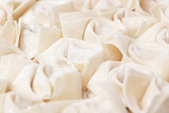 Chinese meat dumpling Royalty Free Stock Photo