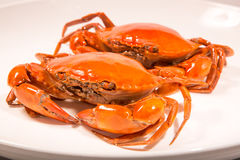 Chinese meat -Marinated crabs-1. China traditional dishes -Marinated crabs Royalty Free Stock Images