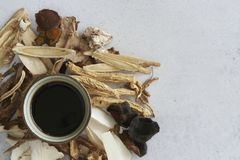 Chinese Medical Herbs. With a cup of herbal extracts royalty free stock photography