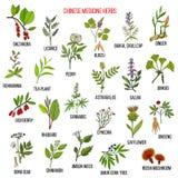 Chinese medicinal herbs Stock Photo