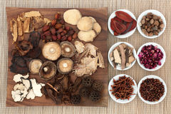 Chinese Medicinal Herbs Royalty Free Stock Photography
