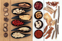 Chinese Medicinal Herbs. Traditional chinese herbal medicine ingredient selection Royalty Free Stock Images