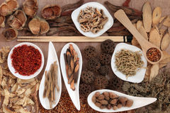 Chinese Medicine Royalty Free Stock Image