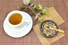 Chinese Medicine. A cup of herbal tea and Chinese medicinal herbs Royalty Free Stock Images