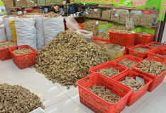 Chinese medicine market Qingping, Guangzhou, China Royalty Free Stock Images