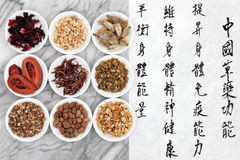 Chinese Medicine. Traditional chinese herbal medicine with mandarin script calligraphy on rice paper over marble. Translation describes the functions to increase Royalty Free Stock Image