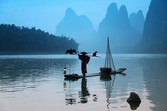 Chinese mens die met aalscholvers binnen vogels vissen stock foto's