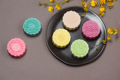Chinese mid autumn festival food. Traditional moon cake shot Stock Images