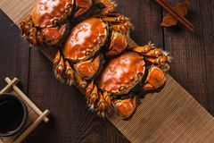 Free Chinese Mitten Crab Is A Delicious Food Royalty Free Stock Image - 161290886