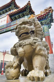 Chinese Mmale Foo Dog Guardian at Chinatown Gate Stock Photos