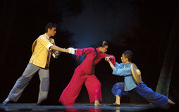 Chinese modern ballet Royalty Free Stock Photography