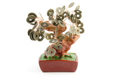 Chinese money tree isolated on white Royalty Free Stock Photography