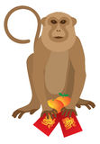 2016 Chinese Monkey with Red Packet and Oranges Vector Illustration Royalty Free Stock Image
