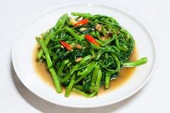Chinese Morning Glory Stir Fried Stock Images