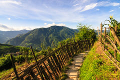 Chinese mountains and stone pathway Stock Photography