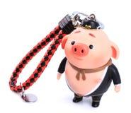 Chinese mythology Pig toy ornaments. Isolated on white background royalty free stock photo