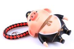 Chinese mythology Pig toy ornaments. Isolated on white background royalty free stock photography