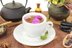 Chinese natural medicine with a cup of tea and stones. Chinese natural medicine with a cup of tea and flower petals and stones Stock Image
