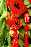 Chinese new year. Festival in Chengdu,capital of Sichuan