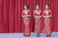 Free Chinese New Year 2019 - Three Hostesses Portrait Stock Photography - 216614272