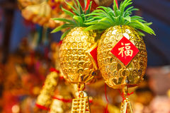 Chinese new year. Royalty Free Stock Photos