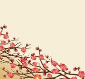 Chinese new year background blooming sakura branches.  Stock Images