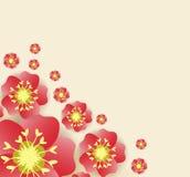 Chinese new year background blooming sakura branches.  Stock Image