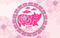 Chinese new year 2019 background. Chinese characters mean Happy New Year. Year of the pig.  royalty free illustration