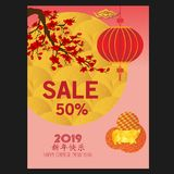 Chinese new year 2019 background. Chinese characters mean Happy New Year. Year of the pig.  vector illustration