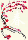 Chinese New Year Card. Plum Blossom