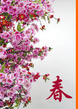 Chinese New Year Card Stock Photography