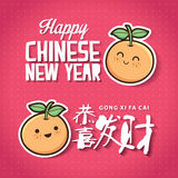 Chinese New Year card Royalty Free Stock Photo