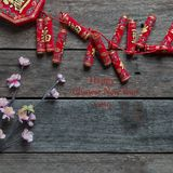 Chinese new year Celebrate 2019 royalty free stock image